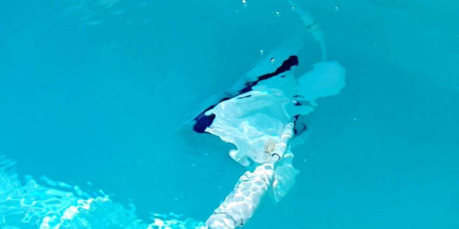 entretien piscine robot